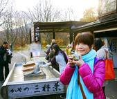 2013日本東北紅葉鐵腿行Day2 奧入瀨溪→十和田湖:P1120598.JPG