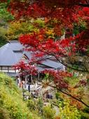 2013日本東北紅葉鐵腿行Day6山寺→鳴子溫泉鄉:P1150283.JPG
