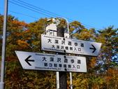 2013日本東北紅葉鐵腿行Day7鳴子峽→平泉中尊寺、毛越寺:P1150727.JPG