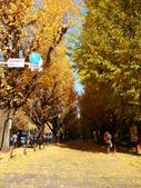 2013東京生日之旅DAY3 外苑→明治神宮→代官山→自由之丘:P1170355.JPG