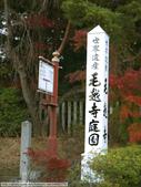 2013日本東北紅葉鐵腿行Day7鳴子峽→平泉中尊寺、毛越寺:P1160133.jpg