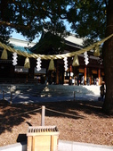 2013東京生日之旅DAY3 外苑→明治神宮→代官山→自由之丘:P1170502.JPG