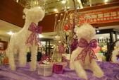 2013年12月聖誕HAPPY樂翻天竹北店1224:DSC_3887.JPG