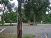 20110827-29馬拉灣及科博館台中之旅:台中東海大學 (10