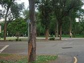 20110827-29馬拉灣及科博館台中之旅:台中東海大學 (11