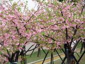 20130212新竹市公園:新竹市公園 (15).JPG
