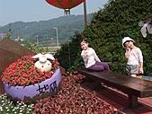 20110228花博:20110228花博 (7).jp
