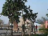 20110206宜蘭烏石港&藏酒酒莊:20110206宜蘭藏酒 001.