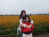 20111211台中新社花海節:20111211新社花海節 (20).JPG