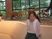 20110827-29馬拉灣及科博館台中之旅:台中科博館 (57)