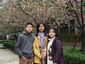 20130212新竹市公園:新竹市公園 (2).JPG