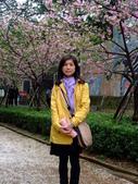 20130212新竹市公園:新竹市公園 (9).JPG