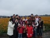20111211台中新社花海節:20111211新社花海節 (11).JPG