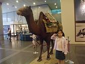 20110827-29馬拉灣及科博館台中之旅:台中科博館 (66)