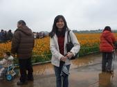 20111211台中新社花海節:20111211新社花海節 (5).JPG