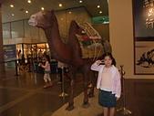 20110827-29馬拉灣及科博館台中之旅:台中科博館 (67)