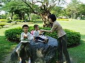 台中科博館-西湖休息站:PB250787