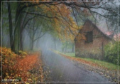 雨景動畫圖:259811041_l.jpg