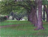 雨景動畫圖:259810199_l.jpg