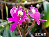 2018-2020台南市:20210122_124835.jpg