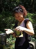 陽明山野餐踏青(20050917):喜感十足