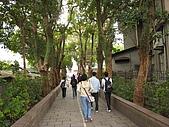 971228 三峽鳶尾山:三峽國小前綠樹成蔭