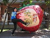 971114.15 苗栗台中輕鬆遊:好大的草莓