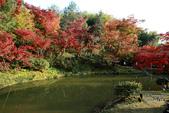 [京都] 高台寺:高台寺 (9).jpg