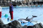 [名古屋] 名古屋港水族館:名古屋港水族館 (4).jpg