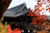 [京都] 東福寺:東福寺 (2).jpg