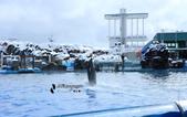 [名古屋] 名古屋港水族館:名古屋港水族館 (6).jpg