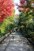 [京都] 高台寺:高台寺 (1).jpg