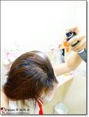 試用:DSC00683.JPG