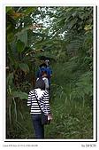 紫微環山:IMG_2755.jpg
