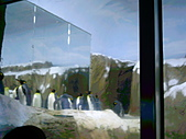 木柵動物園一日遊:DIGI1047