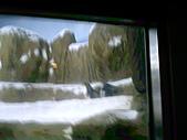 木柵動物園一日遊:DIGI1048
