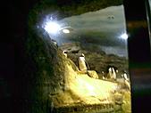 木柵動物園一日遊:DIGI1051