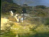 木柵動物園一日遊:DIGI1052