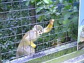 木柵動物園一日遊:DIGI1007