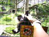 木柵動物園一日遊:DIGI1056