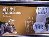 木柵動物園一日遊:DIGI1010