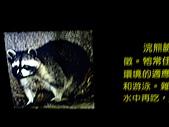木柵動物園一日遊:DIGI1011