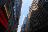 2008美國紐約行:DSC_0004.jpg