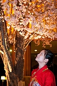 日本-仙台-櫻花:DSC_3934-50.jpg