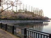 全家京阪5日遊:IMG_4328.jpg
