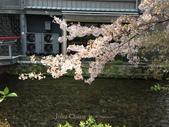 全家京阪5日遊:IMG_4334.jpg
