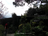 苗栗-山形玫瑰:02.jpg