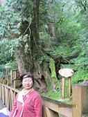2011.8.27拉拉山之旅:IMG_7525.JPG