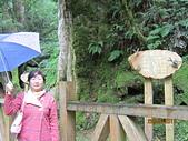 2011.8.27拉拉山之旅:IMG_7524.JPG