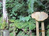 2011.8.27拉拉山之旅:IMG_7521.JPG